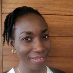 Dr Odewumi  Adegbija